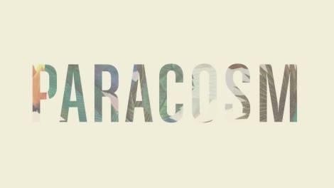 Der aus Georgia (USA) stammende Ernest Greene aka Washed Out brachte im August 2013 seine neue Scheibe Paracosm heraus.